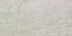 Artic White